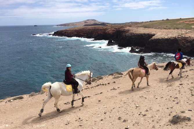 Beach Horse Riding Tour in Gran Canaria: 2 hours 30 minutes photo 1