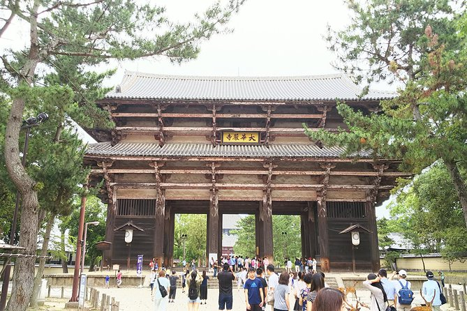 Amazing Tour of 8th Century Capital Nara photo 2