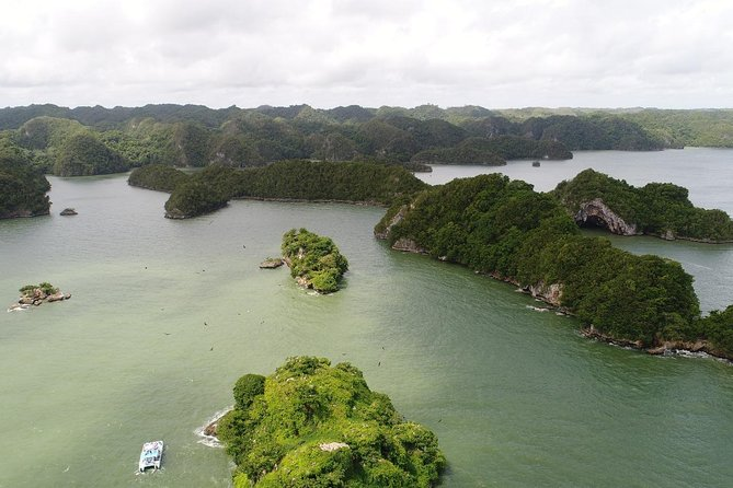 Full Day Los Haitises National Park Tour with Lunch