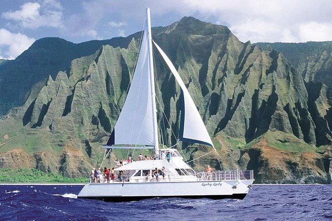 Deluxe Catamaran Cocktail Whale-Watching Cruise