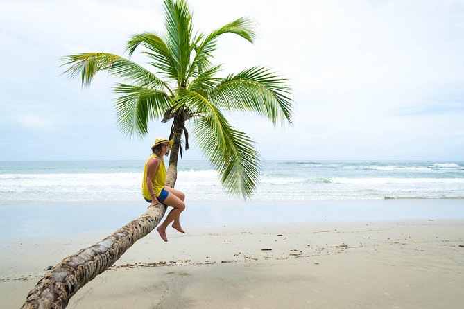 Coastal Tour of Trinidad