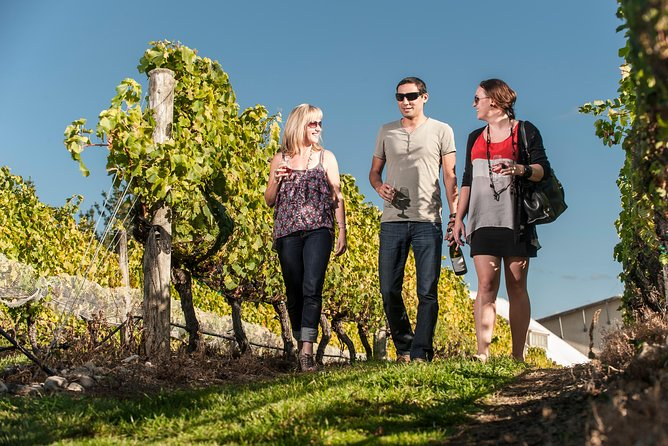 Martinborough Wine Tasting Tour with Lunch from Wellington