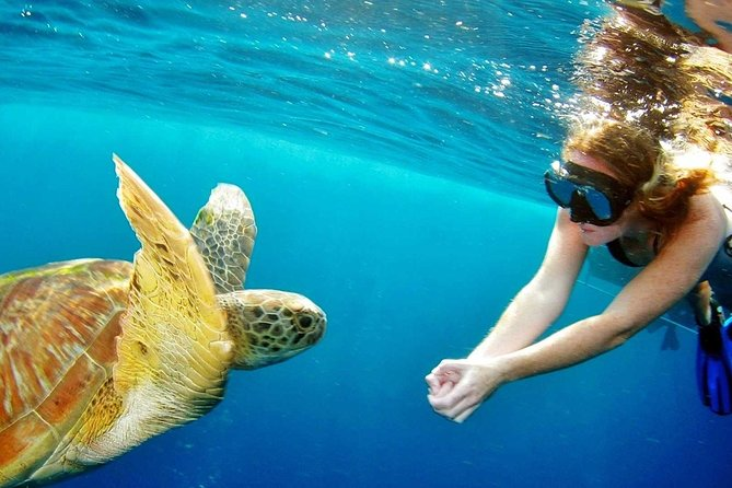 Surin Islands - The Snorkeling Experience from Phuket