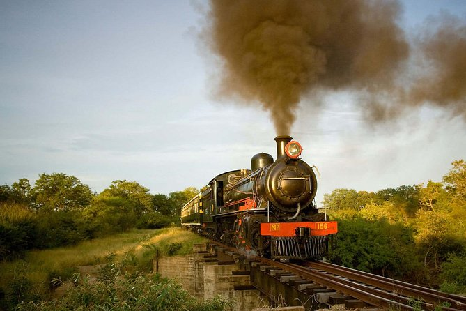 Small-Group Royal Livingstone Express Steam Train with Dinner