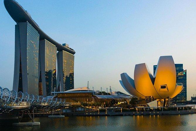 Tour della città di Singapore con guida