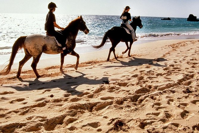 Krabi Horse Riding Program