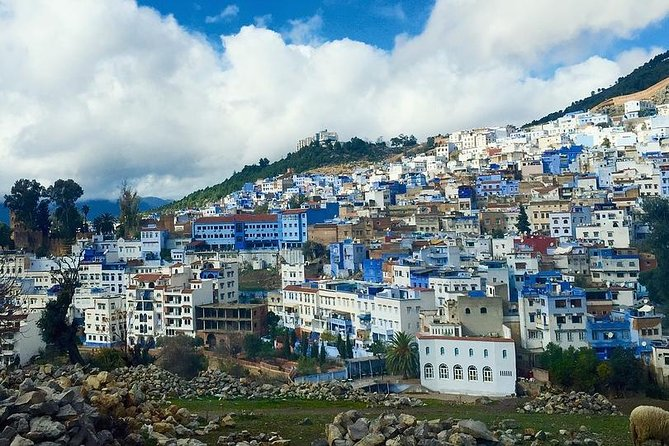 Private full day Tour from Fez to Chefchaouen photo 5