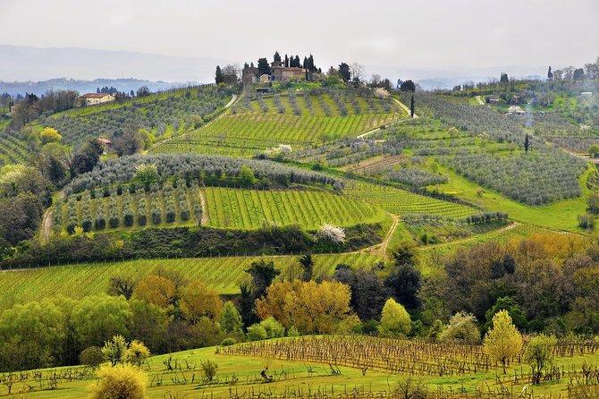 Gita di un giorno a Siena e San Gimignano da Lucca