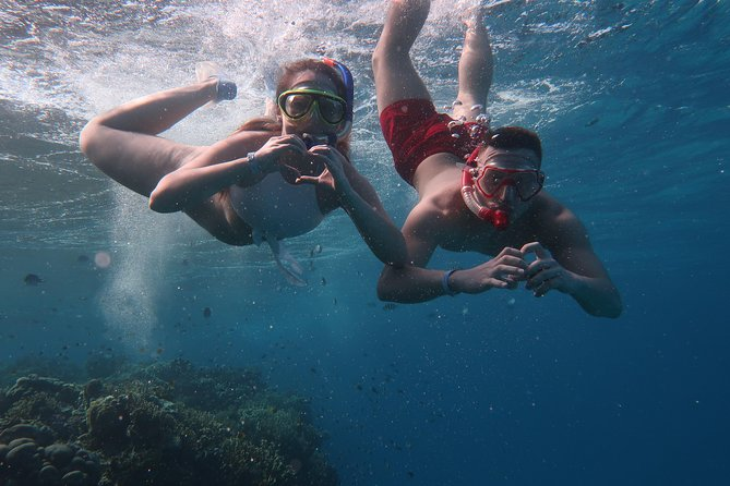 Snorkeling trip in Red Sea