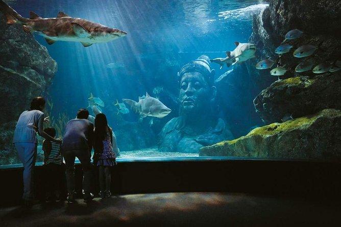 Bangkok Ocean World Sea Life Aquarium