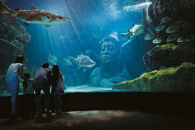 Bangkok Sea Life Aquarium and Madame Tussauds + 4D Movie