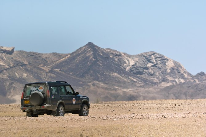 Moon Landscape and Welwitschia Off-Road Half-Day Tour from Walvis Bay photo 9