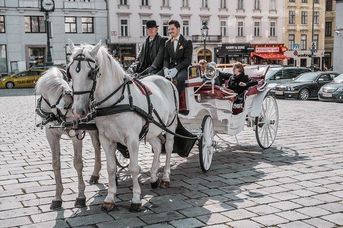 Jantar de cavalgada - passeio de carruagem incl. alimentos e bebidas (SpaklingSight)