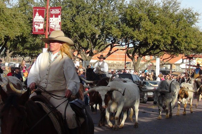 Famous Cattle drive Fort Worth Stockyard