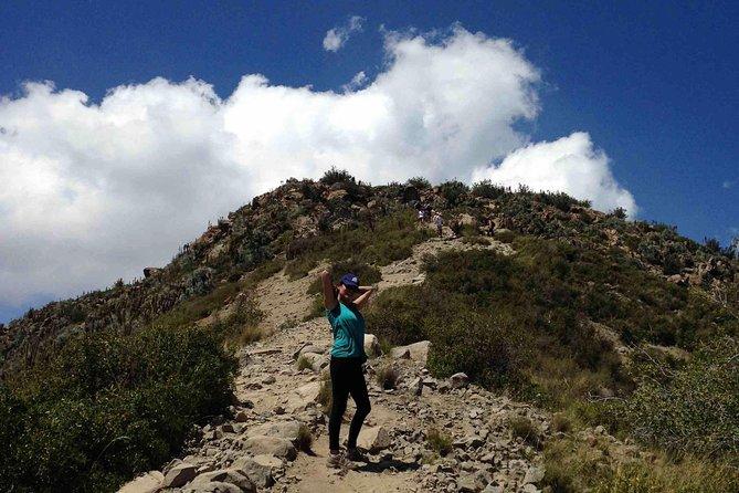 Meio dia de caminhada guiada pelo Cerro Manquehue - Montanha icônica de Santiago, Chile