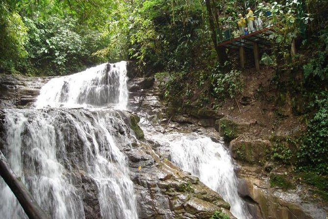 Veragua Rainforest och Tortuguero Canals Tour från Puerto Limon
