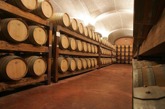 Cagliari Shore Excursion: Wine and Cheese Tasting