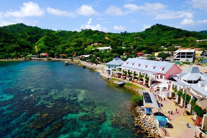 Shore Excursion: Roatan Private VIP Customizable Island Tour