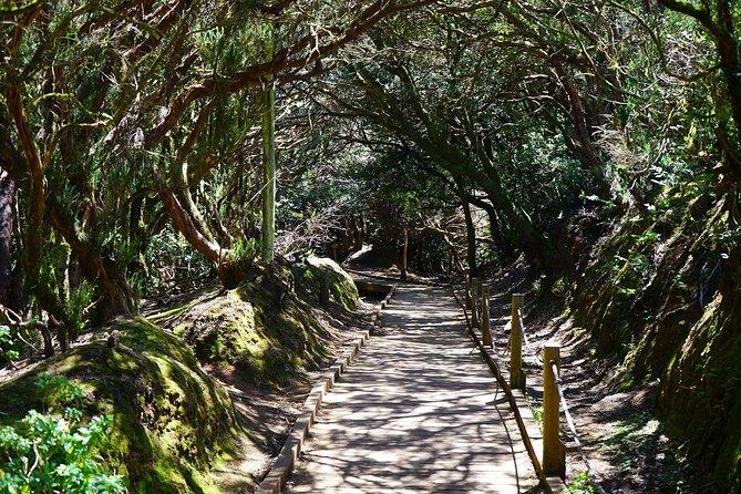 Anaga's Biosphere Reserve tour