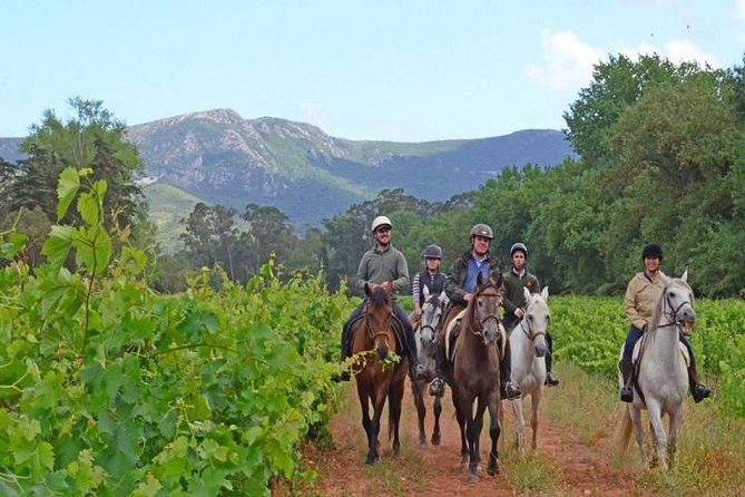 Horseback Riding In Lisbon - Arrábida - Louro Trail Mountain 5 - 6 Hours