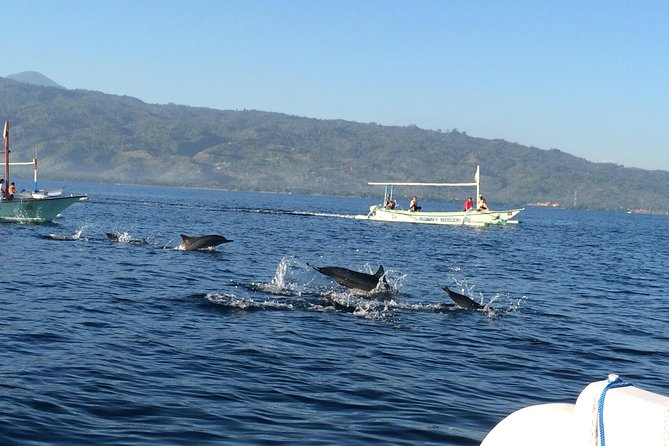 Dolphin Watching in Lovina and Gitgit Waterfall Tour photo 9