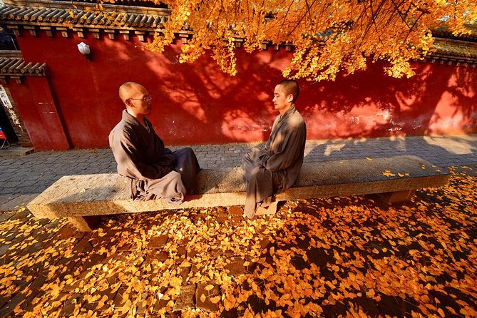 Luoyang Private Day Tour of Shaolin Temple and Longmen Grottoes with Lunch