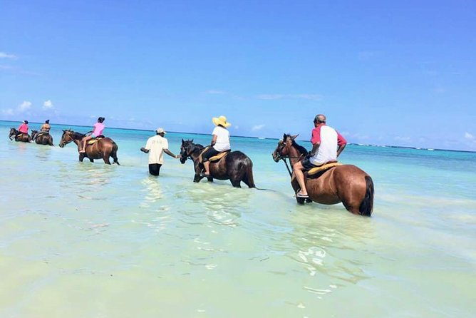 Secret Falls, Blue Hole, and Horseback Riding from Ocho Rios