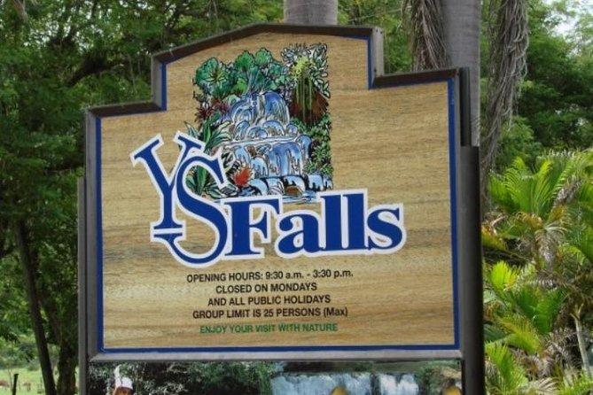 Private YS Falls Tour von Montego Bay