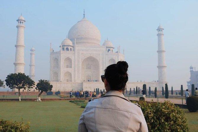 Private Tour: Half Day Taj Mahal Sunrise Tour