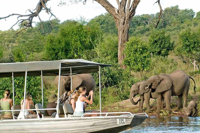 2-Day Camping Safari in Chobe National Park from Victoria Falls photo 8