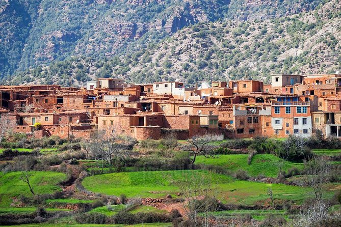 Day trip from Marrakech to Atlas Mountains including hiking and walking trek photo 4