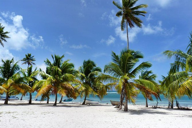 All-Inclusive Saona Island Full Day Trip and Catamaran Cruise from Santo Domingo photo 6