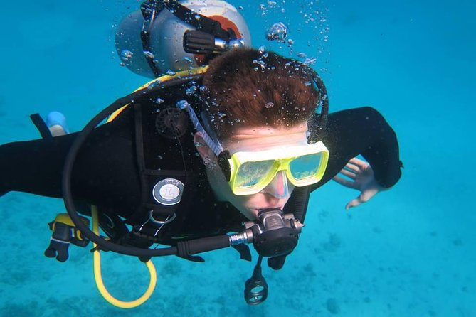 Daily diving for certified divers