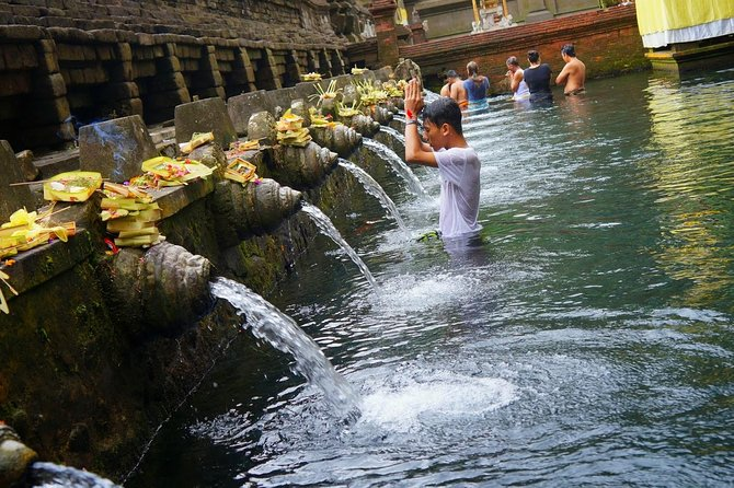 Best Of Ubud Tour: UNESCO Rice Terrace With Jungle Swing