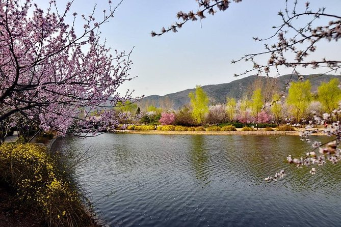 Beijing Private Tour To the Temple of Azure Clouds and Beijing Botanical Garden with Lunch inclusive photo 7