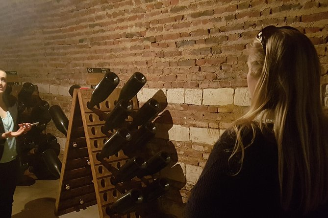 Taste champagne with a winemaker and visit his cellar. photo 8