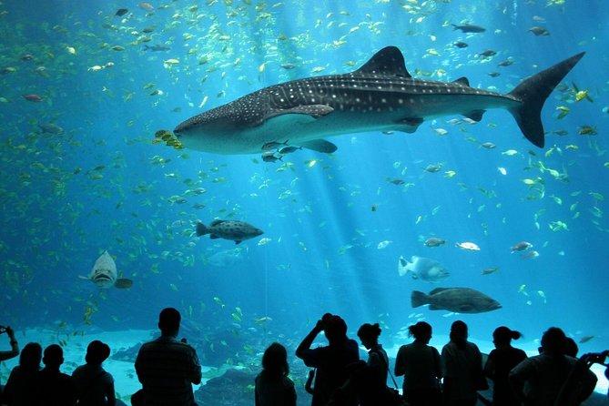 Bangkok SEA LIFE Ocean World Eintrittskarte