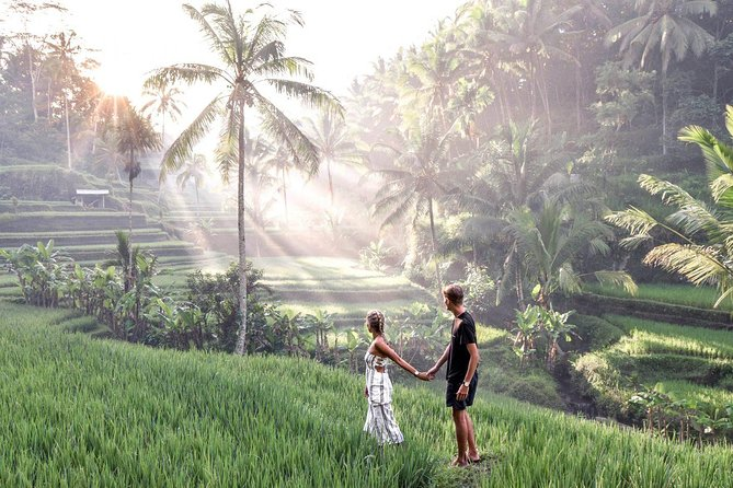 Ubud - Private Tour with Wifi onboard