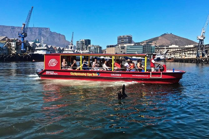 Cruzeiro turístico de 30 minutos na Cidade do Cabo com comentários em tempo real