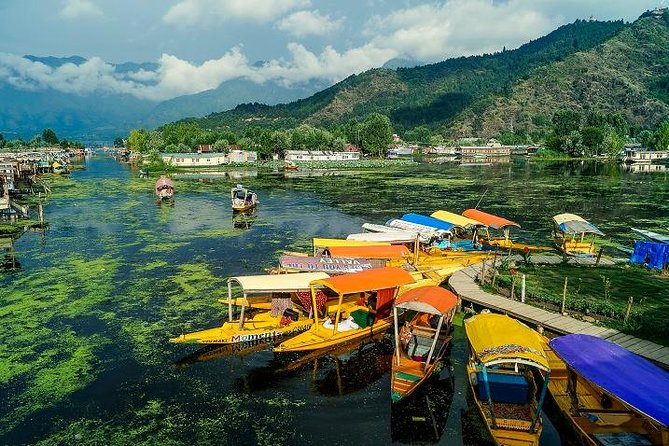 Full day tour of Srinagar with Entrance Fee, Guide, Shikara ride & Lunch