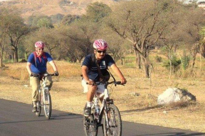 Bicycle Excursion To Explore Villages Around Bikaner
