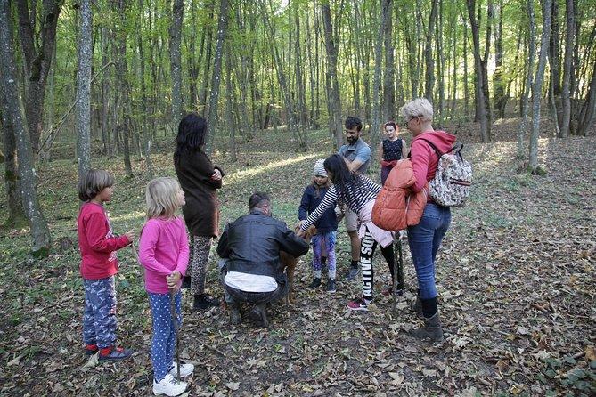Truffle Hunting in Romania