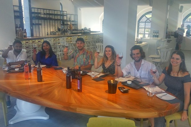 The Paths Of Oinos (Premium Santorinian Wine Degustation)