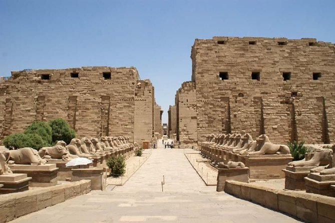 Private Day Tour to Luxor East and West Banks