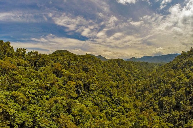 MINDO CLOUD FOREST FLEXIBLE PRIVATE DAY TOUR