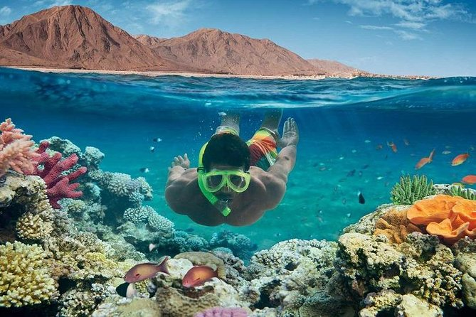 El Gouna Royal Snorkeling VIP Sea Trip -Hurghada