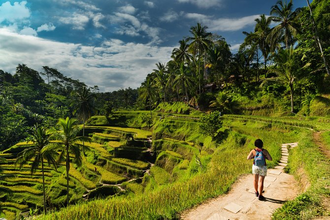 Kintamani Tour: Tegalalang Rice Terraces, Goa Gajah Temple, and More