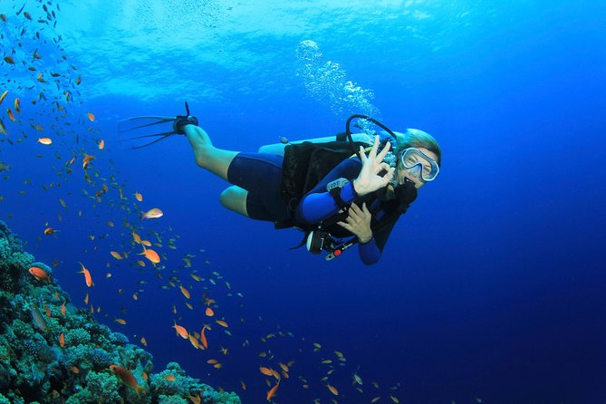 Discover Scuba diving with 2 dives on Koh Tao
