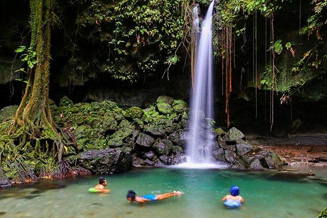 Sin colas: boleto de entrada al sendero natural Emerald Pool