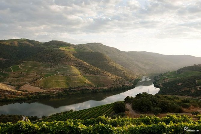 Our magnificent Douro Valley photo 1